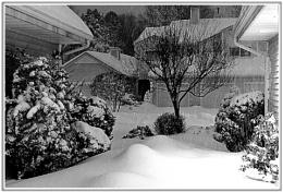 *** Snow storm ***