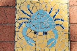Mandurah Mosaics
