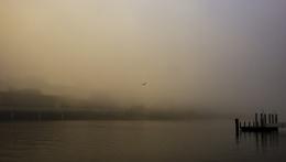 Photo : A foggy morning