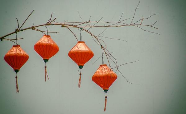Lanterns of Hoi An by JanetAS