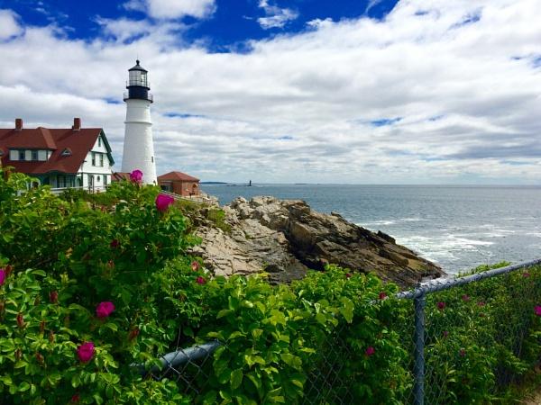 Beauty in Portland. Maine USA