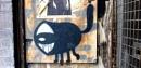 One-Eyed Cat by RysiekJan