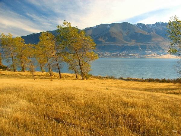 Lake Pukaki 43 by DevilsAdvocate
