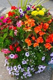 Civic bouquet