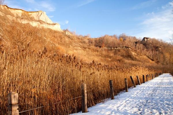 Snow Trail by manicam
