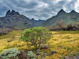The Anaga Hills