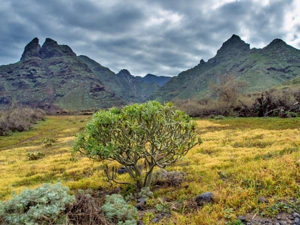The Anaga Hills by bwlchmawr