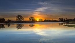 Mogshade Sunrise