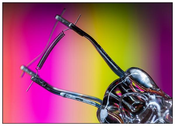 Filament by EddieAC