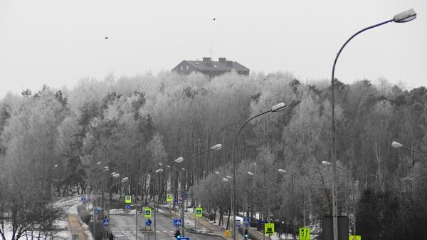 Winter in my street