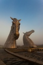 Golden Kelpies by MrsS