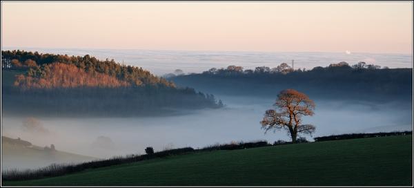 Winter Morning Kingscliffe by Otinkyad