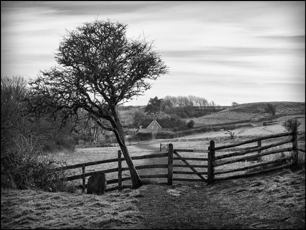 Landscape Near Burton Bradstock by bwlchmawr