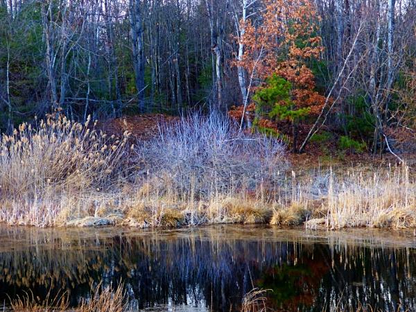 Benson Park Hudson NH by lgl98