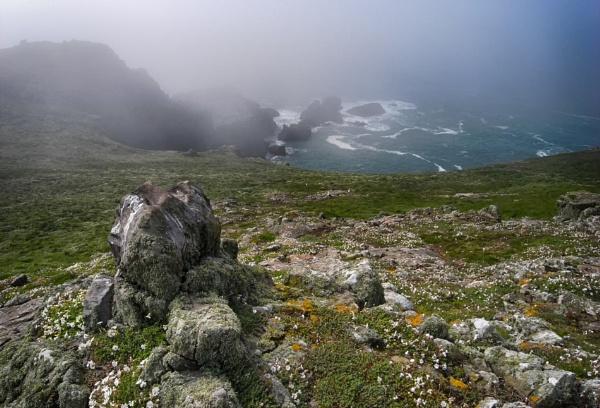 Skomer isle in the Fog