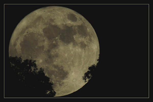 Full Moon by prabhusinha