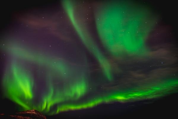 Green Night by gerryg