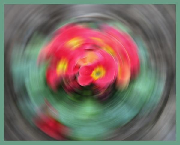 FLOWER POWER by JOKEN