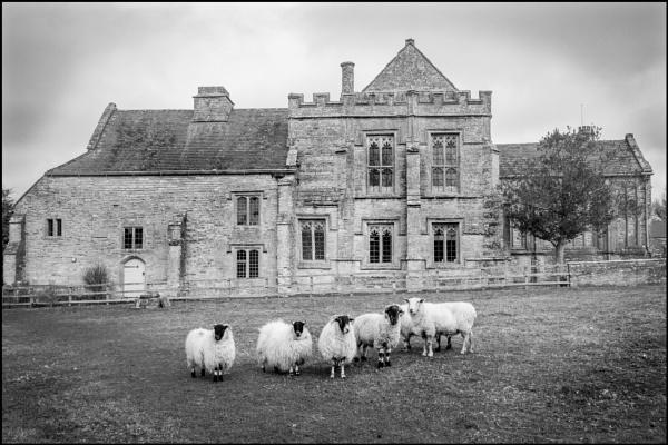 Muchelney Abbey by bwlchmawr