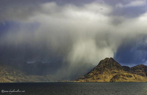 Soaring High.. by Scottishlandscapes