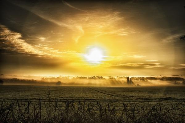 Morning Glory by chrisbryan