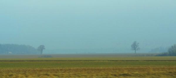 Bipolar field in the blue fog by SauliusR