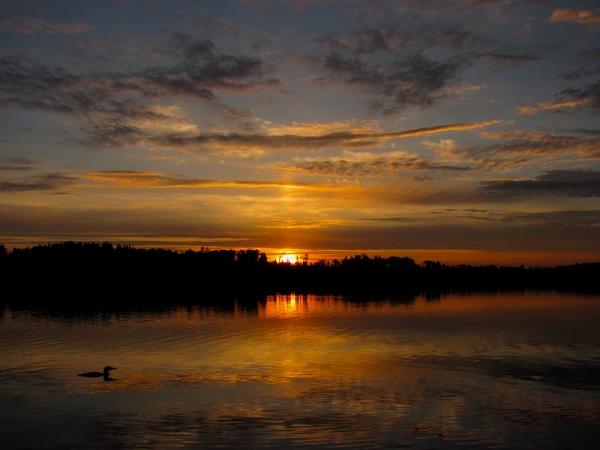 Sunrise O'Sullivan Lake, Ontario, Canada