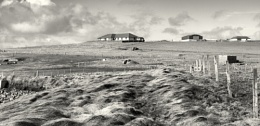 Toab Shetland