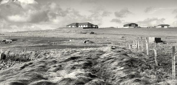 Toab Shetland by scrimmy
