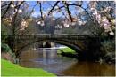 """""""The Bridge"""" by RonnieAG"""