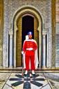 Guard. by WesternRed