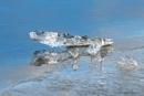 Ice , water , reflections and sunshine. by kuvailija