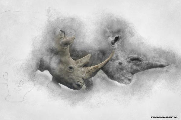 The Woburn Rhinos. by Nodulespix