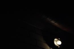 Exit light, enter night