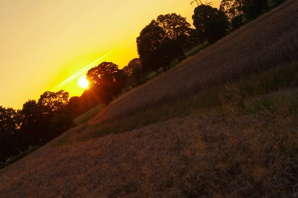Angled Sunset by PentaxBro
