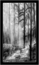Mammoth Mist