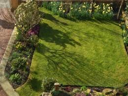 Garden Shadows