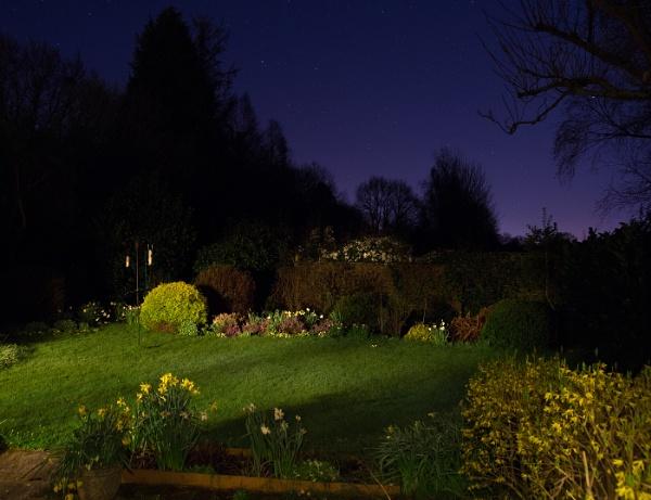 The Garden at Night by Otinkyad