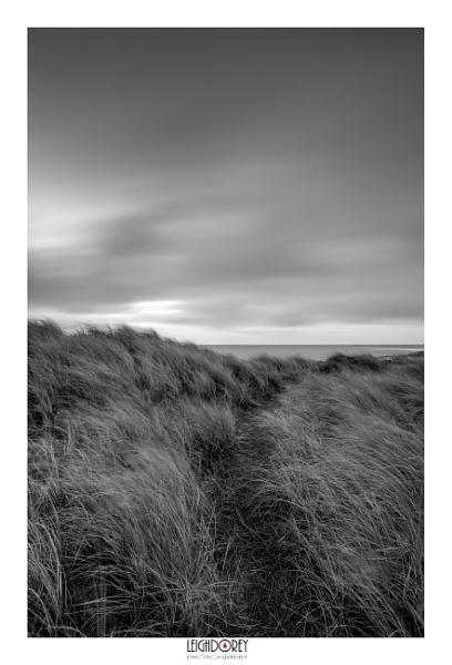Mono Sand Dunes by LDorey