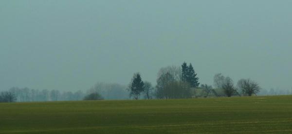 Farm in the blue fog