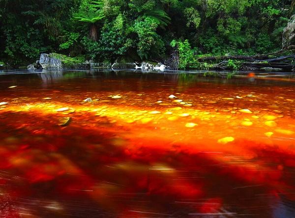 Oparara River 5 by DevilsAdvocate