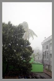Summer Storm  - Kaal Baisakhi