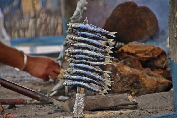Sardines by assendelft