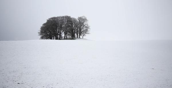 Wintry Hilltop by Jedross