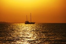 sails in sun set
