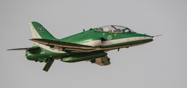 Saudi Hawk close up by WorldInFocus