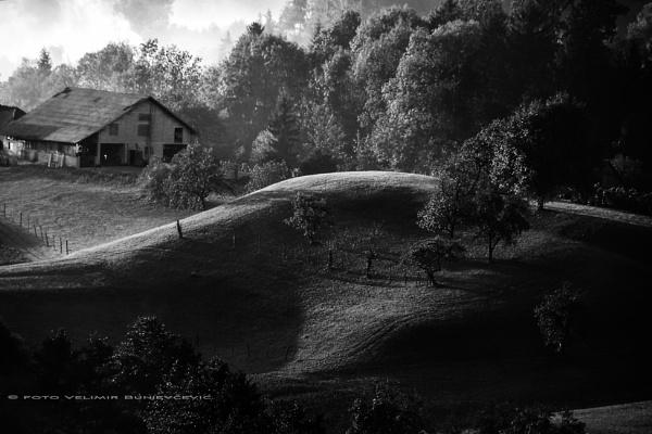 early morning 8 by Velja