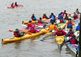Kayak  Colour