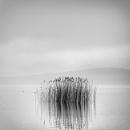 Minimal Landscape by Diggeo