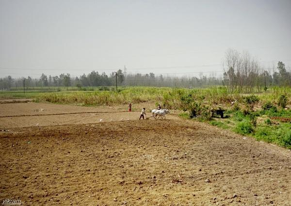 Rural India by Bantu
